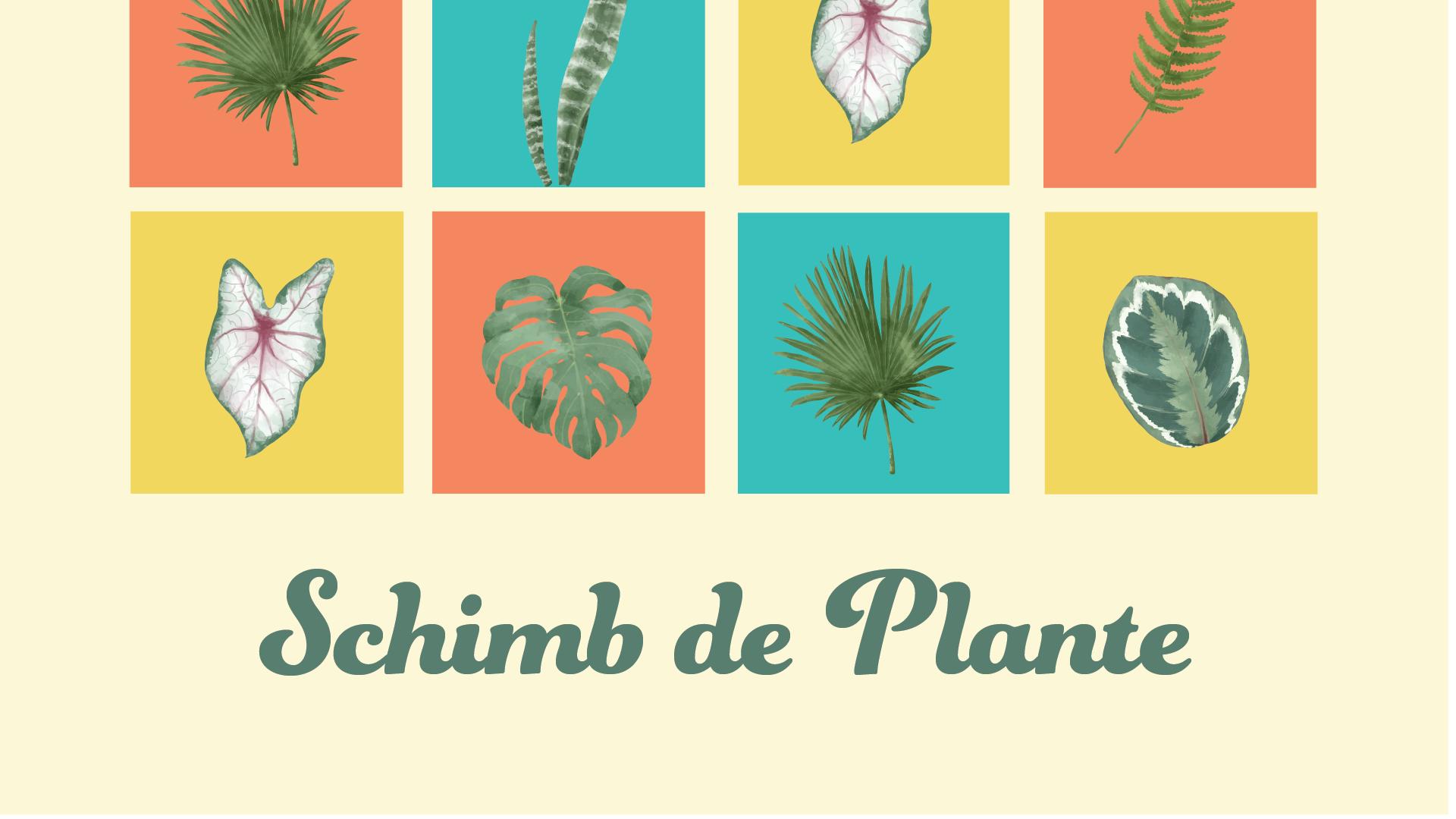 Schimb de plante